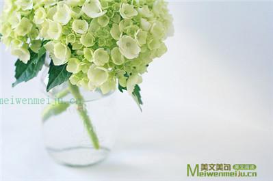 秋收——刘博洋